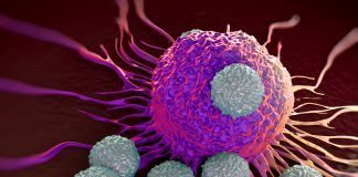 T-cells attacking a cancer cell.